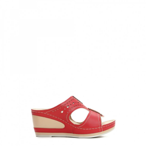 6258-19 RED 36 41